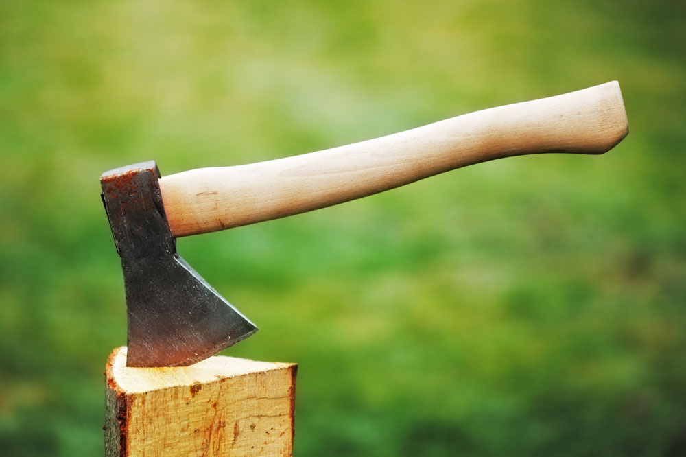 Axe In Wood - things to do in idaho falls